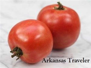 Arkansas-Travelerlabeled