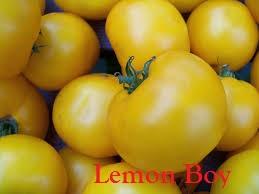 lemonboylabeled