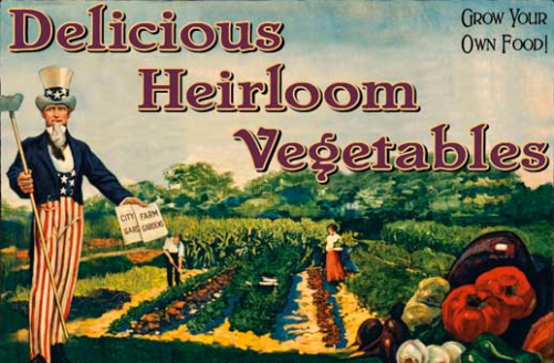 heirloom-seeds
